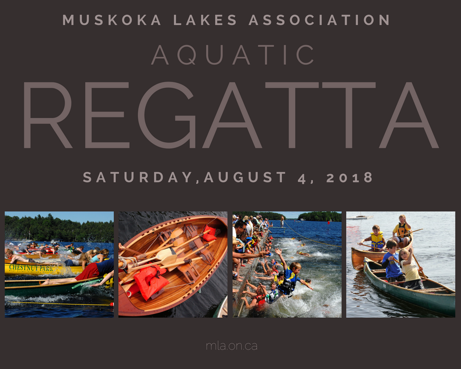 Aquatic Regatta 2017